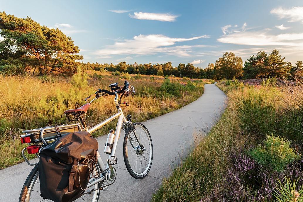 elektrische fietsen e-bike Vélos électriques Battery Fix®