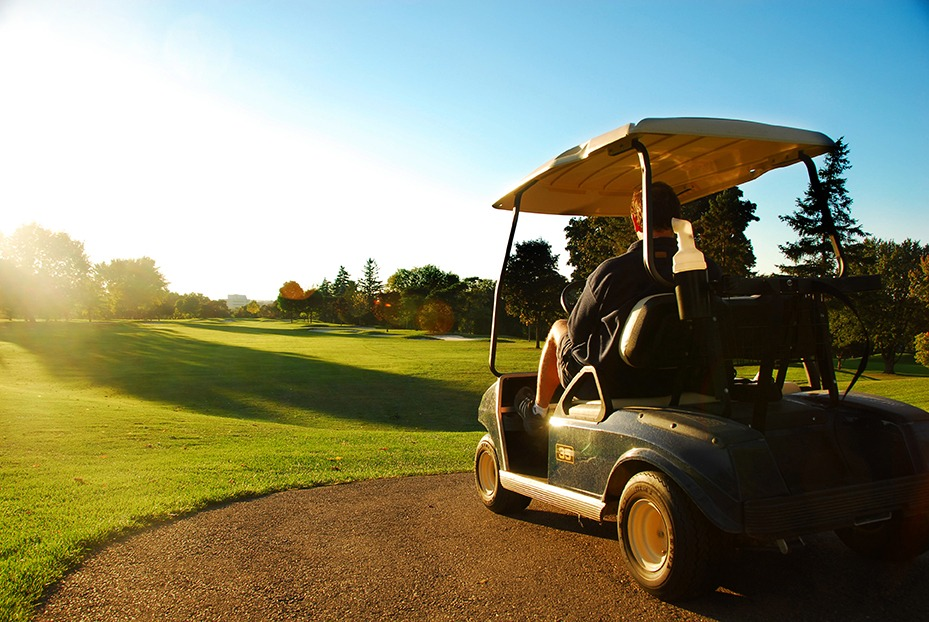 Golfkar golf carts golfwagens Voiturettes de golf