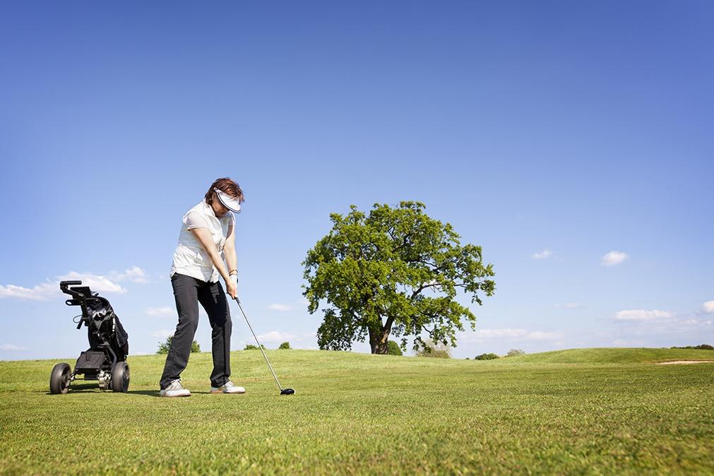 golf trolley Trolleys